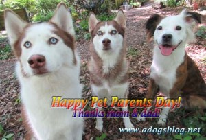 IMG_2891 petparentday sml